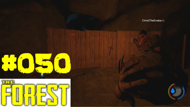 #50 | Beste Wand Ever | Let's Play The Forest