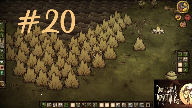 #20   Chefkoch Manuel   Let's Play Don't Starve Together