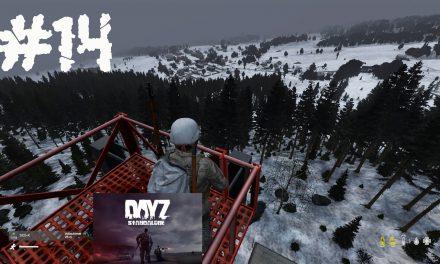 #14 | Ausspähen | Let's Play DayZ Standalone